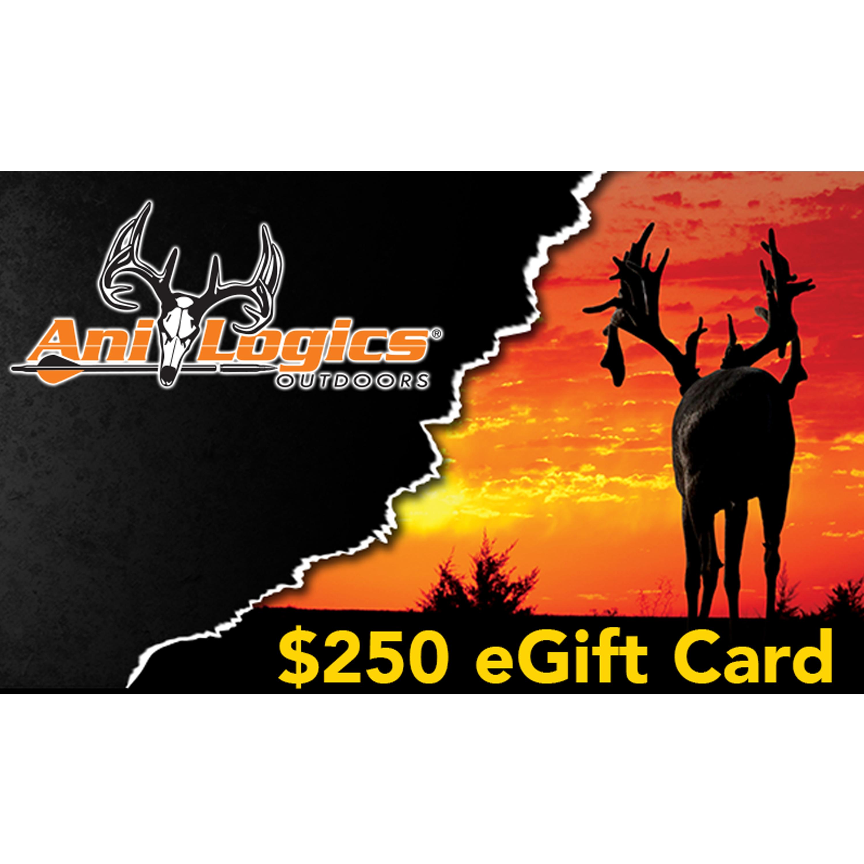 Ani-Logics $250 eGift Card