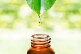 Essential Oils for Deer