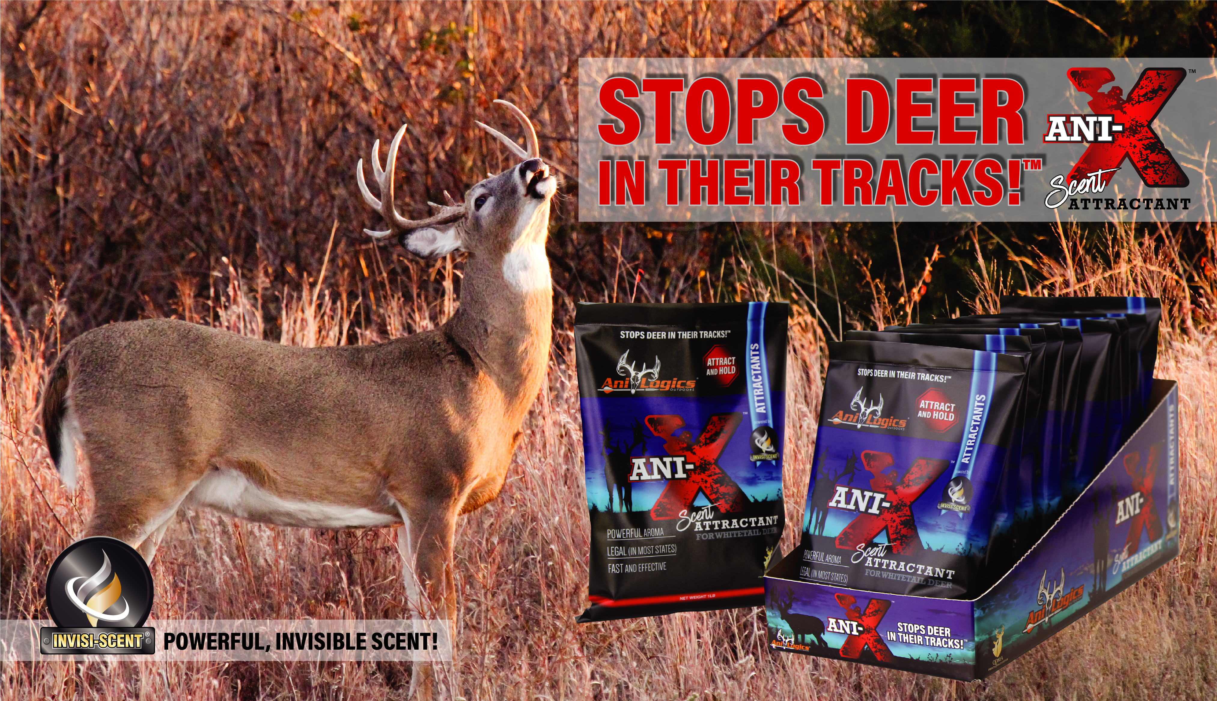 ANI-X™ SCENT ATTRACTANT – STOPS DEER IN THEIR TRACKS™